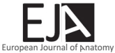 Articles Submission and Editor